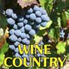 Arizona Wine Country Tours